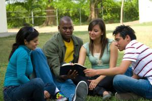 Chosen to Win Mentorship